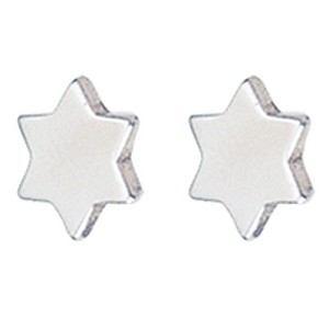 Small Stainless Steel Star of David Post Earrings